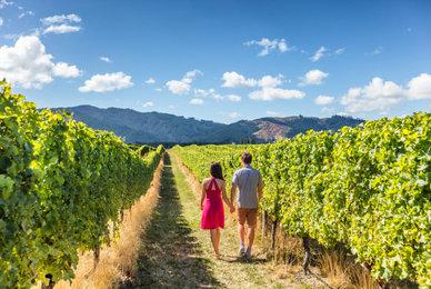 Visite des vignes en Roussillon